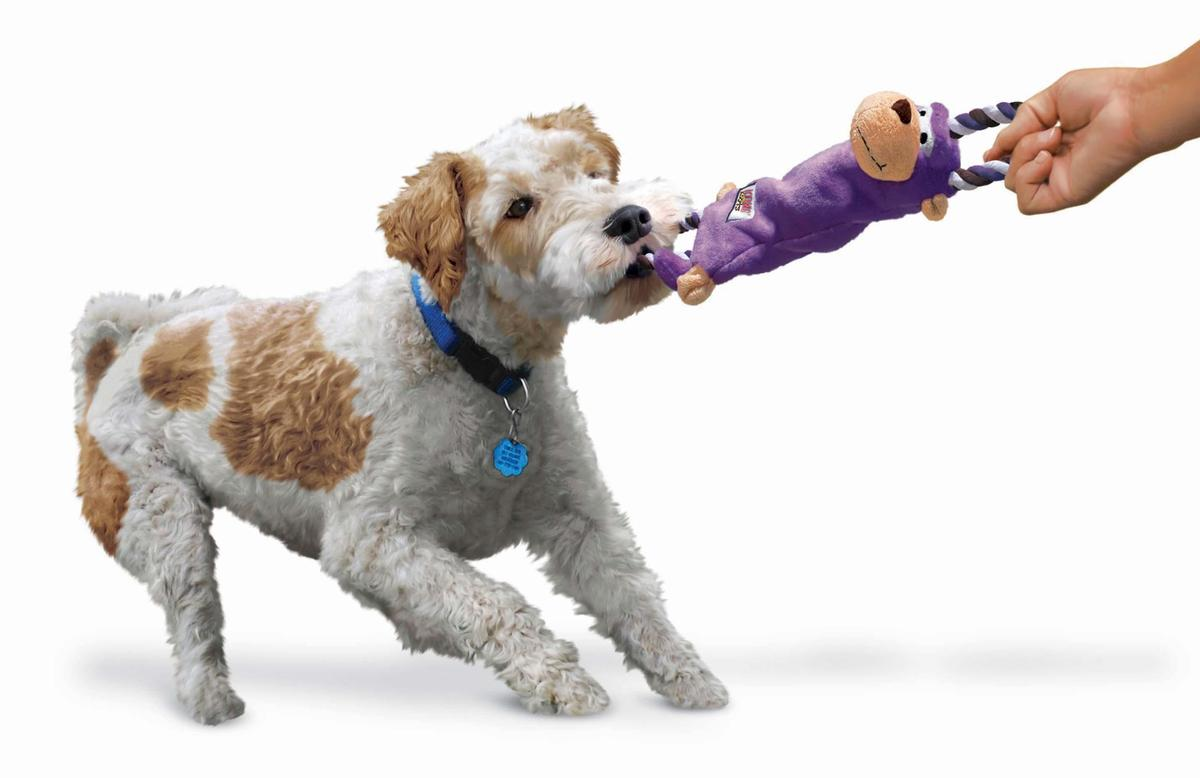 Kong Tugger Knots For Dogs In Two Sizes And Various
