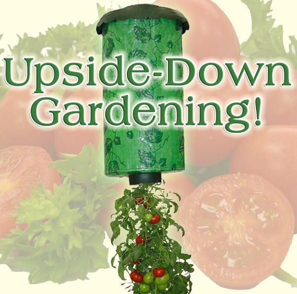 best quality upside down tomato planter hot item ebay