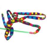 CatDancer Rainbow Cat Charmer - Interactive Cat & Kitten Toy